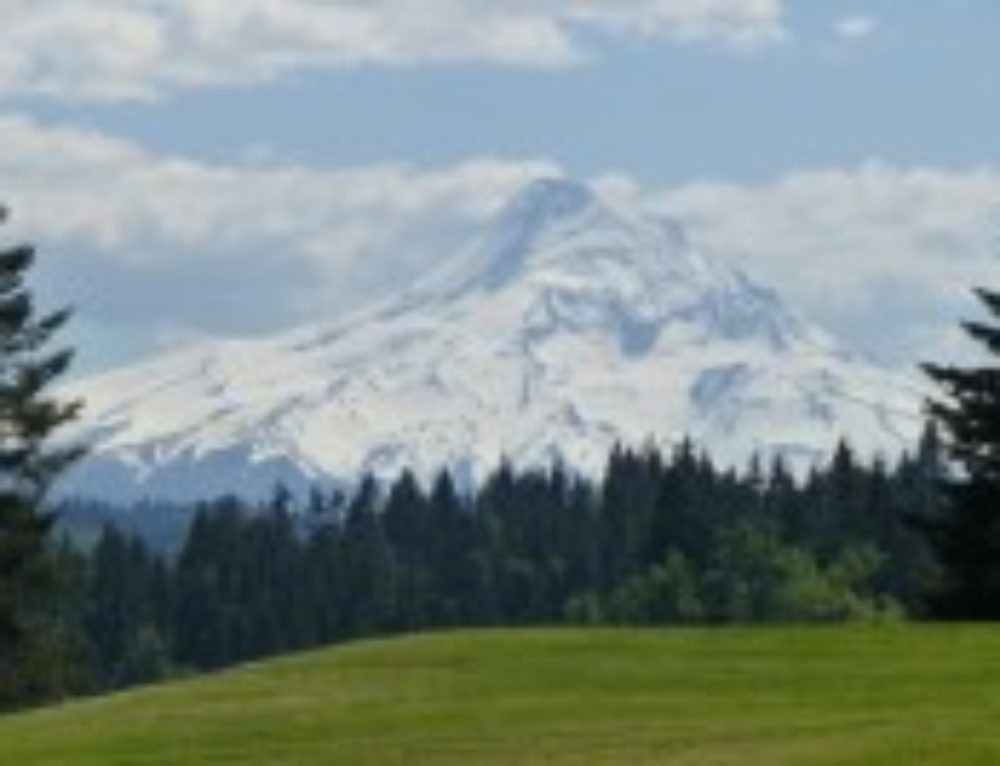 Social Distancing/Private Tour- Mt Hood Loop Tour