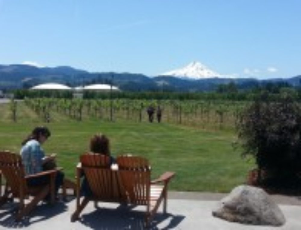 Maryhill Winery & Columbia River Gorge Vineyards Tour (2-day package)