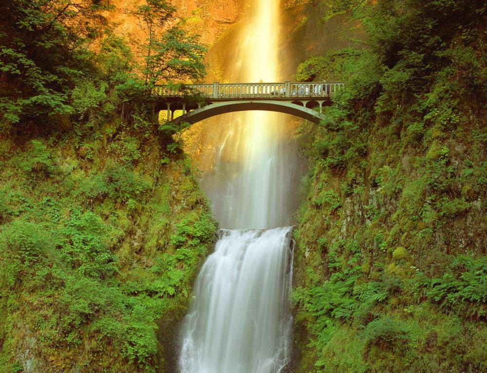 Columbia Gorge Waterfalls Tour (NAHRO)